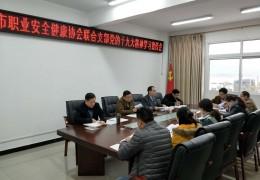 协会党支部组织召开党的十九大精神学习宣传会
